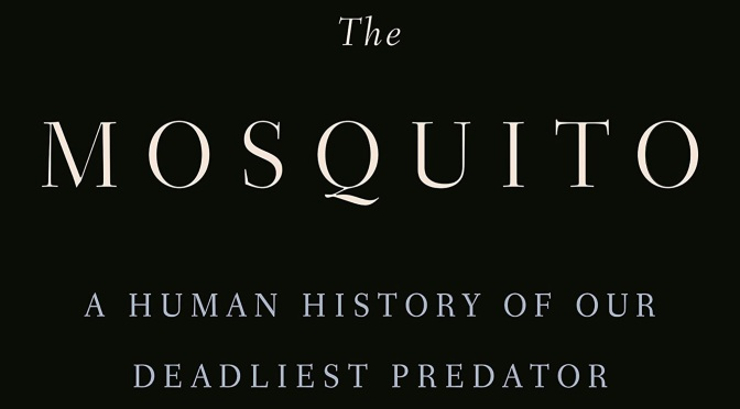 The Mosquito – REVIEW