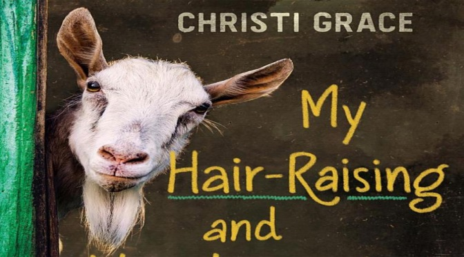 My Hair-Raising and Heartwarming Adventures  as a Pet Sitter – REVIEW